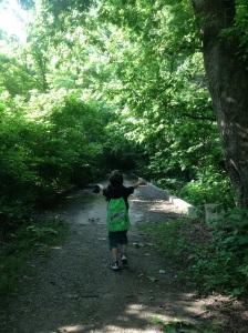 Nature Walking